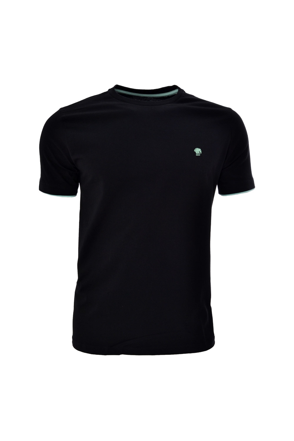 CAMISETA MC BLUES SUPER SLIM ALGODAO GOLA C LISO PRETO